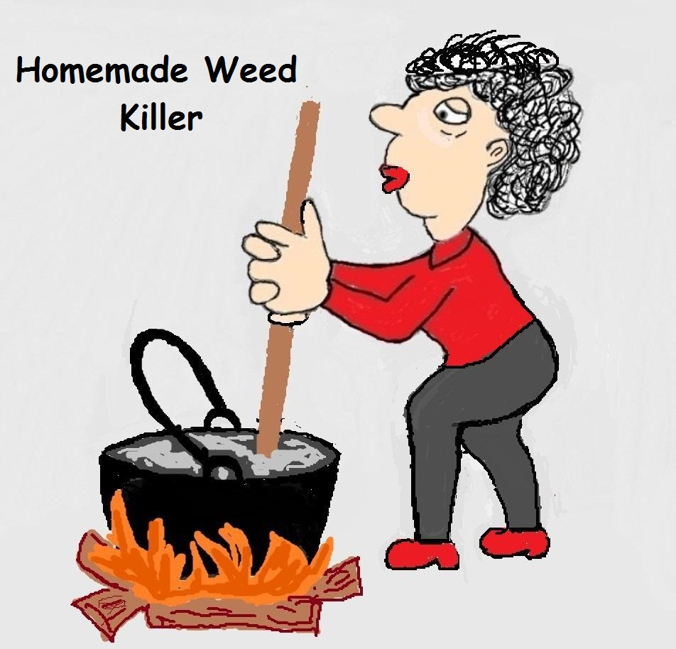 Homemade weed killer is a non toxic answer to a common problem. If you have a yard, you have an endless supply of weeds.